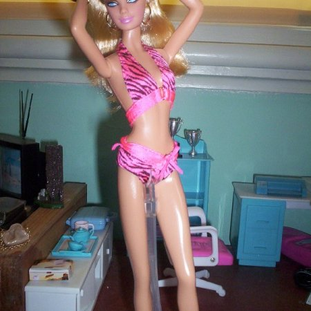 image Barbies in swimsuits