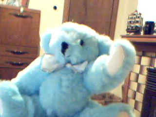 Here is a teddy bear I made some years ago.