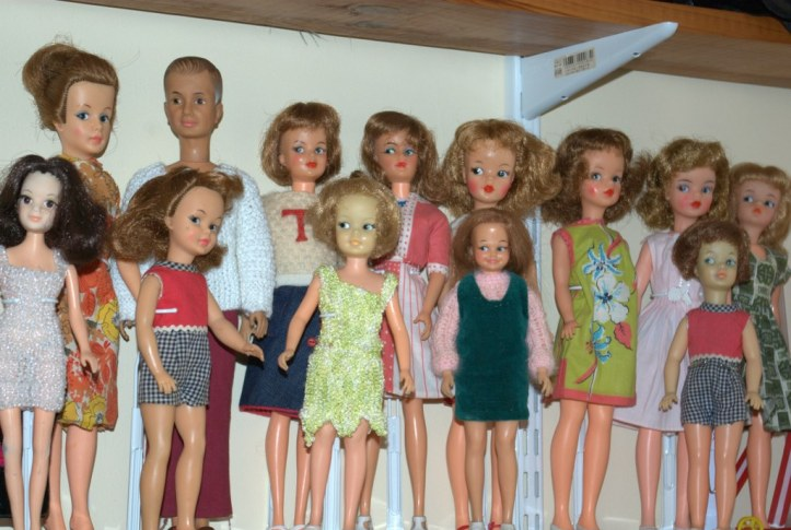 The Tammy Family have outgrown their home.