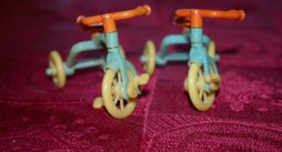 Renwal Tricycles