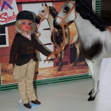 Sindy in Pony Club with dapple horse.