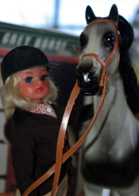 Sindy and her new horse