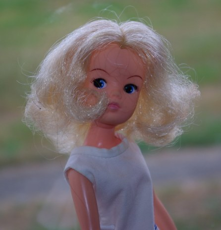 Party Time Sindy 1981 (I think)