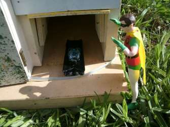But it's been shrunk by the Joker!