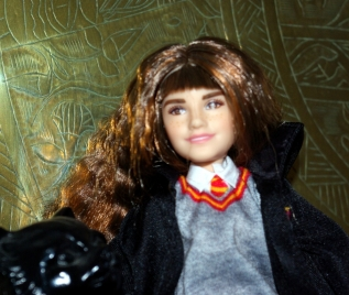 Hermione Granger from the Harry Potter series.