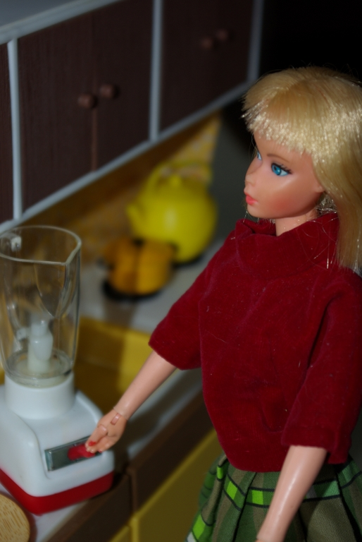 Equestrienne Barbie, foreign issue in the Illco 1:6 scale kitchen.