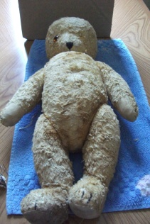 Teddy needs help.