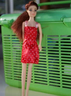 She is one of those fashion dolls you often find in bargain stores.